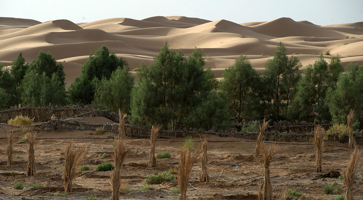 , Could climate risk insurance reduce the cost of climate change adaptation in the Middle East?