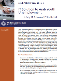 Combating Arab Youth Unemployment through IT-Based Public Private