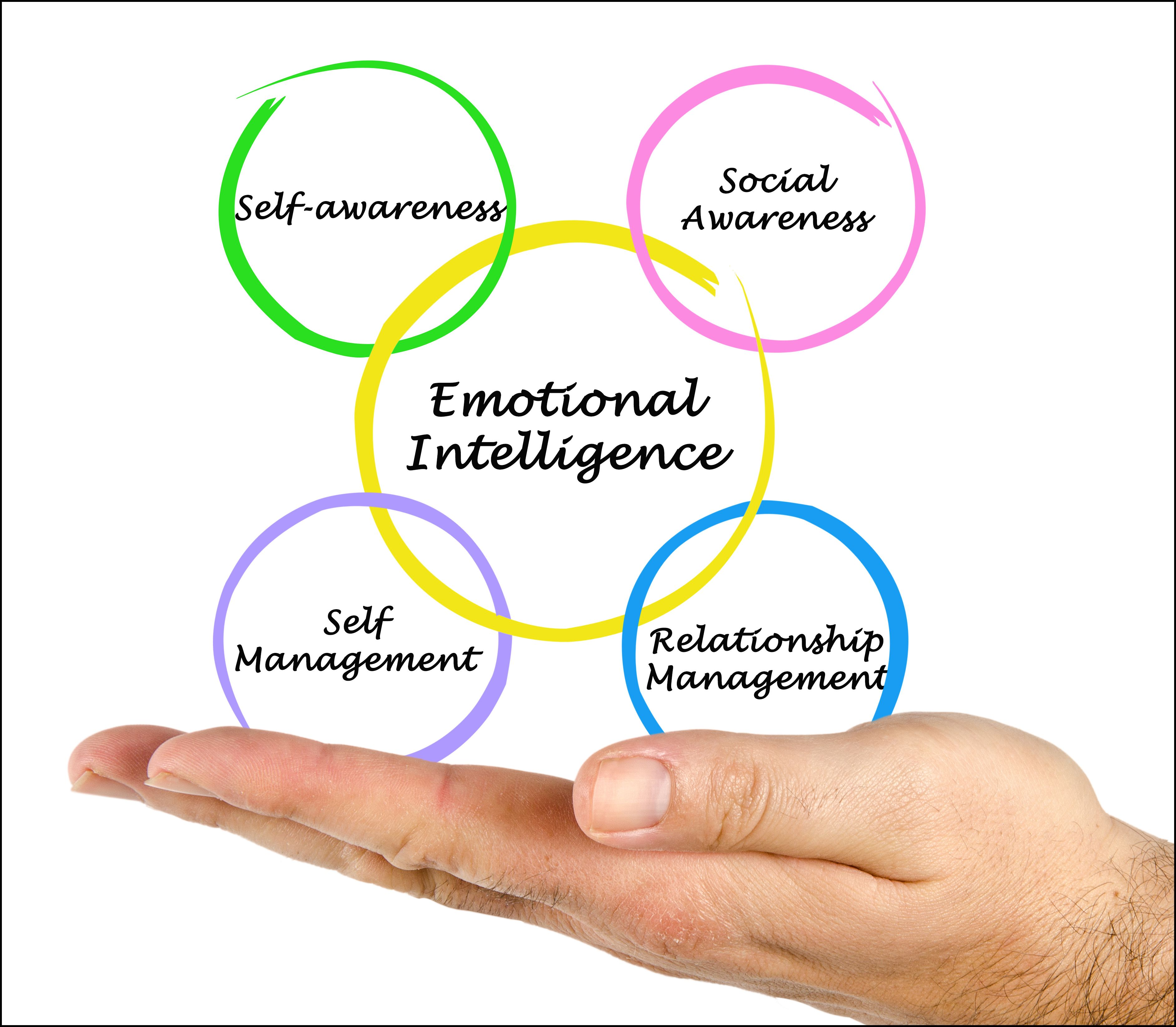 Social Emotional Intelligence Is >> The Role Of Emotional Intelligence In Humanitarian Response Middle