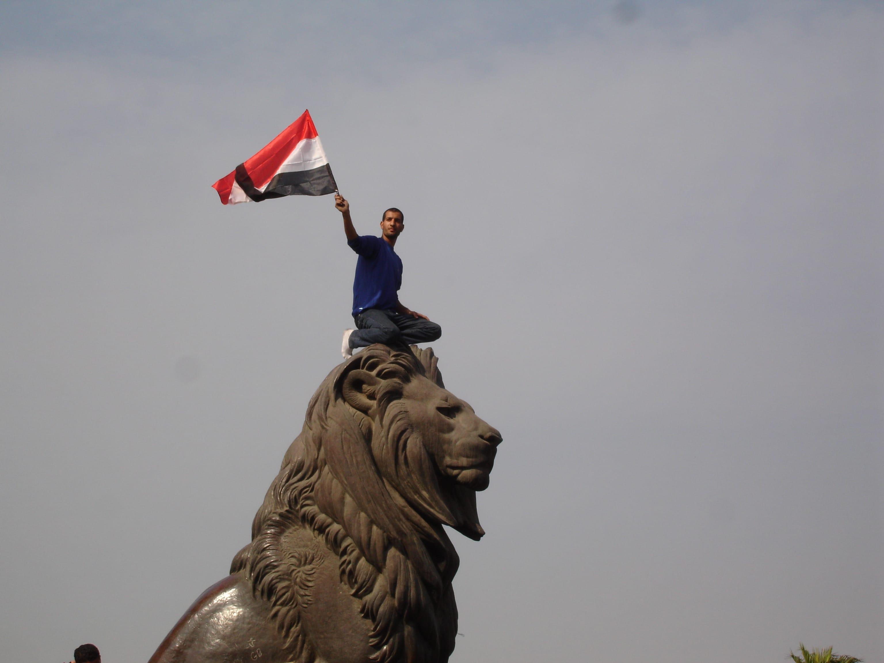 Egypt's Revolutionary Elite and the Silent Majority