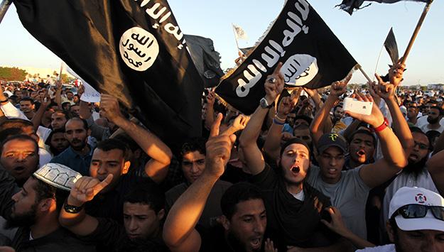 The Caliph's Revenge