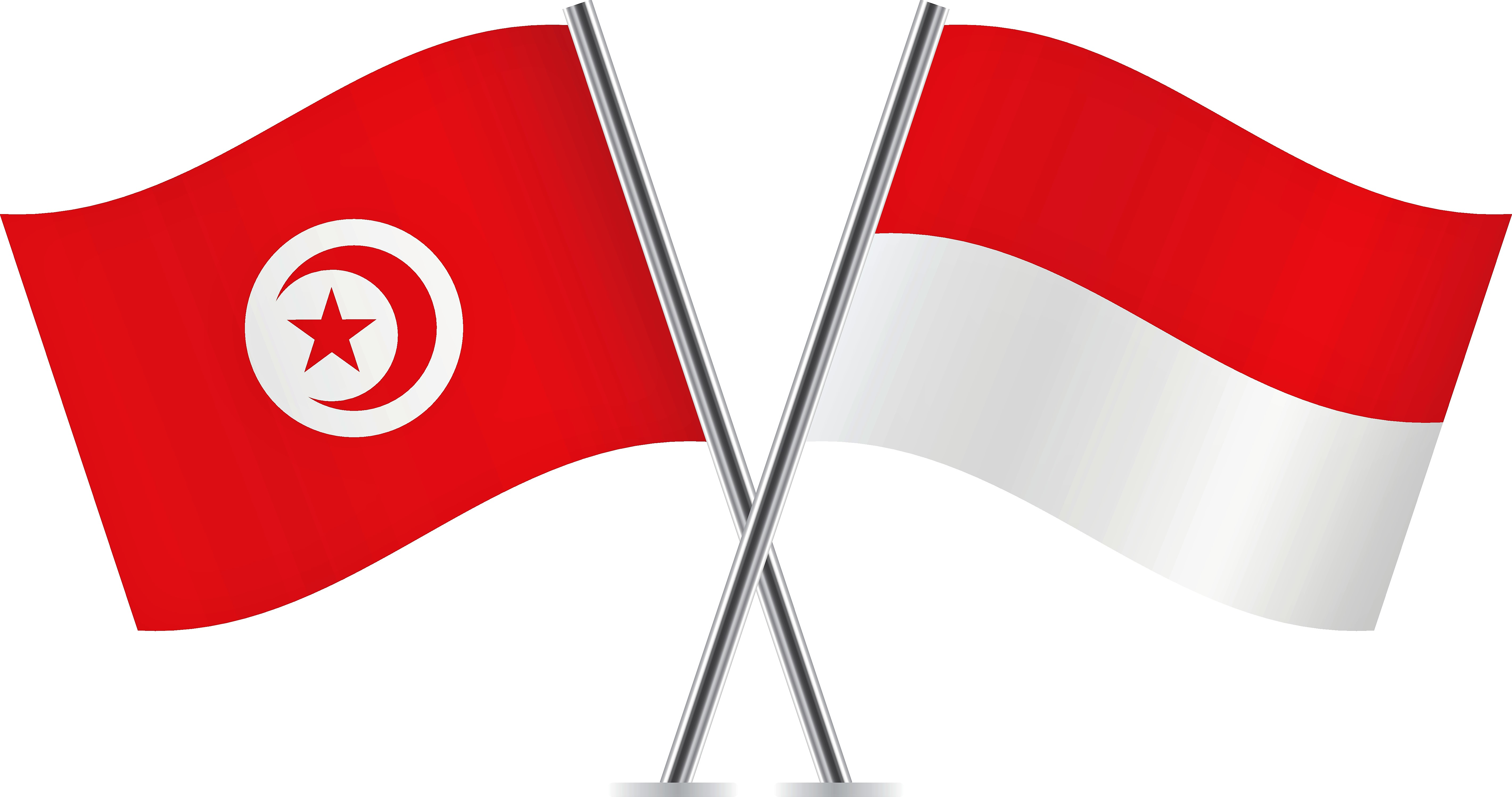 Indonesia and Tunisia: Democracy as a Distinctive Link