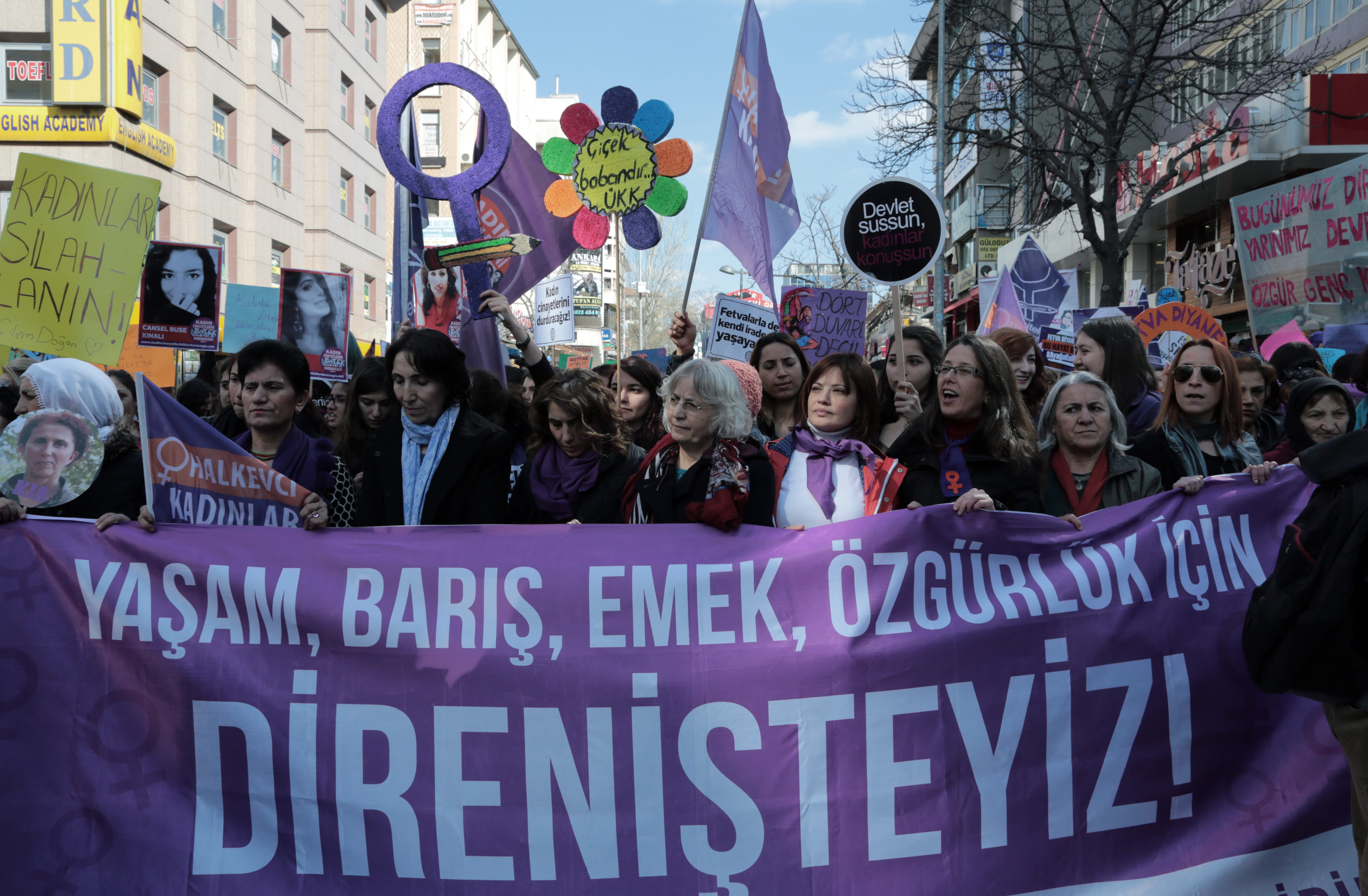 The Societal Roles of CSOs: Evidence from Turkey