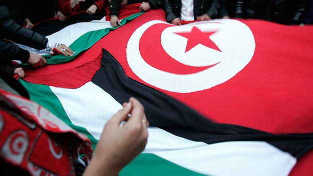 The Arab Awakening: Determinants and Economic Consequences